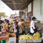 毎週日曜日の朝は、「船橋市場の日曜朝市」8時~11時くらいまで実施中!